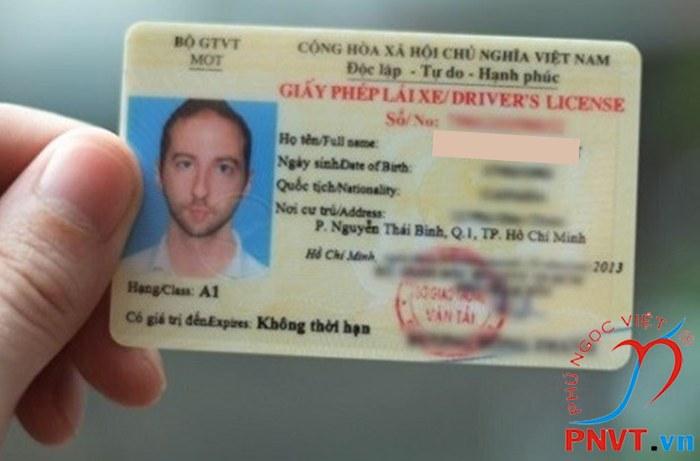 mẫu giấy phép lái xe việt nam Pet