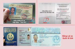 mẫu giấy phép lái xe bằng lái xe
