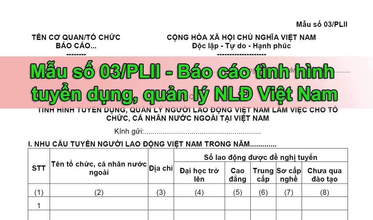 Mẫu số 03/PLII báo cáo tình hình tuyển dụng, quản lý người lao động Việt Nam